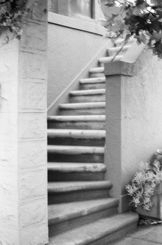 Stairs to Nowhere by Larkin Small